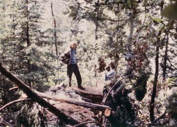 Jentri on downed tree