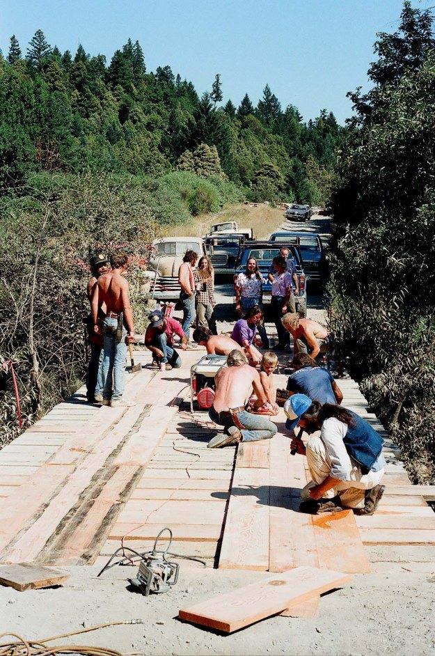 bridge 1 ed